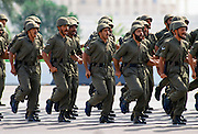 Military parade of armed forces in Abu Dhabi, United Arab Emirates