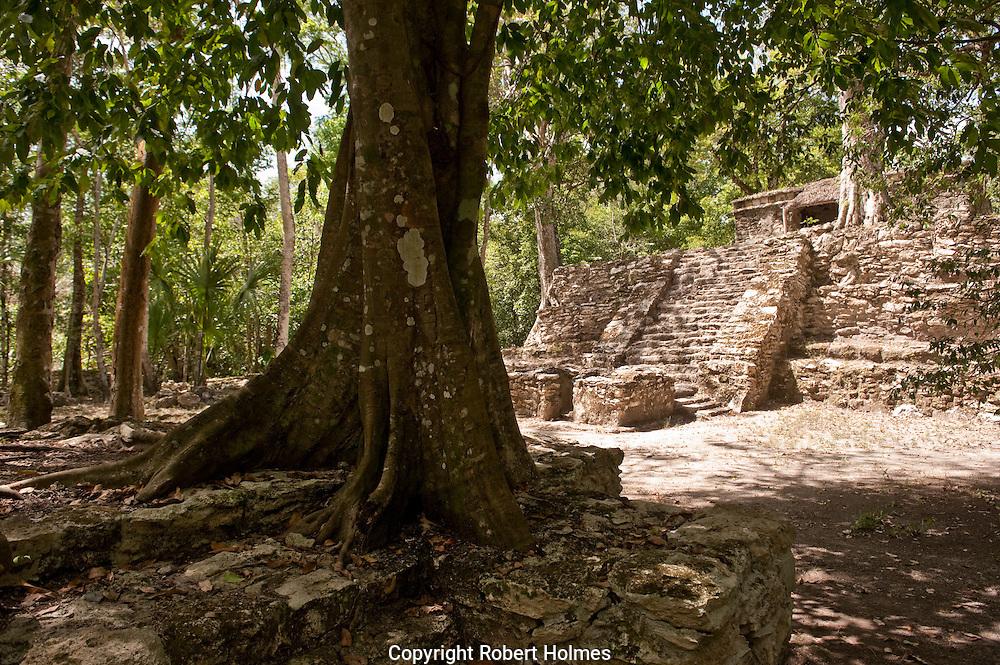 Mayan Muyil Pyramid in Sian Ka'an Bioshere