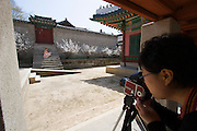 Changdeokgung Palace. Fashion shooting.