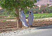 Two women in white robes talking in the shade of a tree and holding hands, Tinerhir, Morocco.