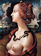 Piero di Cosimo (January 2, 1462 – 1521), also known as Piero di Lorenzo, was an Italian Renaissance painter. Portrait of Simonetta Vespucci, c1480
