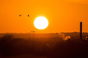 UNITED KINGDOM, London: 13 Jan 2016 The sun starts to rise over South West London on yet another beautiful January morning. Rick Findler / Story Picture Agency