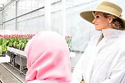 Tweede dag van het staatsbezoek van de Singaporese president. Koningin Maxima en president Halimah Yacob van de Republiek Singapore tijdens een bezoek aan het Horticultural Centre, een demonstratie- en onderzoekscentrum van Wageningen University &amp; Research. <br /> <br /> Second day of the state visit by the Singaporean President. Queen Maxima and President Halimah Yacob of the Republic of Singapore during a visit to the Horticultural Center, a demonstration and research center of Wageningen University &amp; Research.