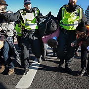 Thousands of Extinction Rebellion activists took over 5 bridges in Central London and blocked them for the day, November 17 2018, Central London, United Kingdom. Lambeth Bridge; a young activist is arrested and taken away. Around 11am people on all bridges sat down in the road and blocked traffic from coming through and stayed till late afternoon. The actvists believe that the government is not doing enough to avoid catastrophic climate change and they demand the government take radical action to save future generations and the planet. MMany are willing to be arrested peacefully protesting and up to 80 were arrested on the day.Extinction Rebellion is a grass root climate change group started in 2018 and has gained a huge following of people commited to peaceful protests and who ready to be arrested. Their major concern is that the world is facing catastropohic climate change and they want the British government to act now to save future generations.