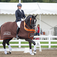Elementary Open - 2014 British Dressage National Championships