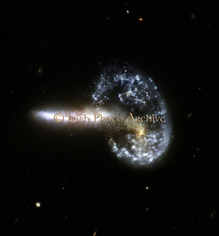 Hubble Interacting Galaxy Arp 148, the staggering aftermath of an encounter between two galaxies, resulting in a ring-shaped galaxy and a long-tailed companion. The collision between the two parent galaxies produced a shockwave effect that first drew matter into the center and then caused it to propagate outwards in a ring. The elongated companion perpendicular to the ring suggests that Arp 148 is a unique snapshot of an ongoing collision. Infrared observations reveal a strong obscuration region that appears as a dark dust lane across the nucleus in optical light. Arp 148 is nicknamed Mayall s object and is located in the constellation of Ursa Major, the Great Bear, approximately 500 million light-years away. This interacting pair of galaxies is included in Arp's catalog of peculiar galaxies as number 148.