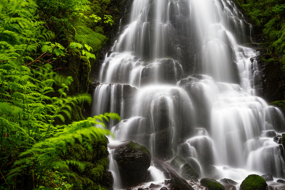 Fairy Falls in the Columbia River Gorge is smaller than most in the area but not any less beautiful as it sits nestled among the lush green ferns.