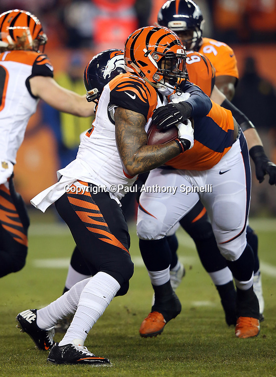 Cincinnati Bengals running back Jeremy Hill (32) gets tackled by Denver Broncos nose tackle Sylvester Williams (92) as he runs the ball during the 2015 NFL week 16 regular season football game against the Denver Broncos on Monday, Dec. 28, 2015 in Denver. The Broncos won the game in overtime 20-17. (©Paul Anthony Spinelli)