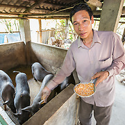 CAPTION: The cooperatives' role isn't limited to linking producers with markets further afield, they have also started providing their members with a number of other services that help them to access better quality and more affordable inputs. So far, they have provided animal feed, veterinary services, small chicks and agricultural inputs at stable prices. This all makes it possible for local farmers to produce better quality produce for marketing in Hanoi. LOCATION: Coong Village, Huy Tuong, Son La Province, Vietnam. INDIVIDUAL(S) PHOTOGRAPHED: Vi Van Chung.