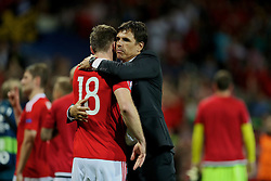 TOULOUSE, FRANCE - Monday, June 20, 2016: Wales' Sam Vokes and manager Chris Coleman celebrate the 3-0 victory over Russia and reaching the knock-out stage during the final Group B UEFA Euro 2016 Championship match at Stadium de Toulouse. (Pic by David Rawcliffe/Propaganda)