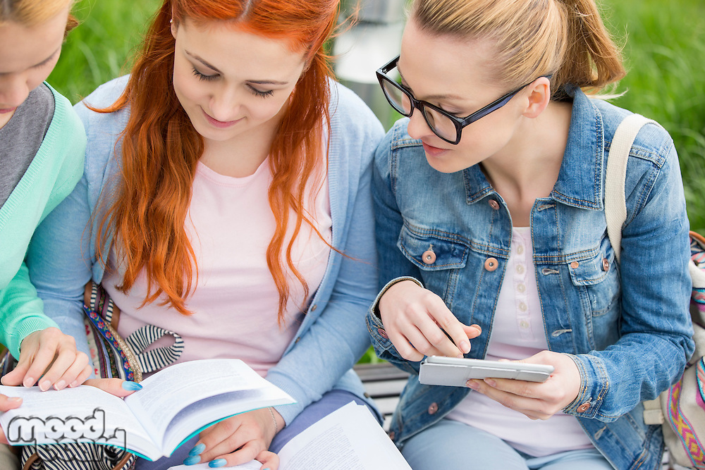 Young women studying together in park