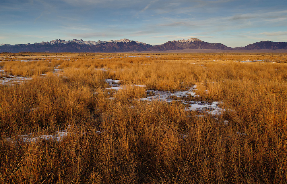 Winter meadows  and a view of the Sangre de Cristo Range, Medano Ranch, San Luis Valley, Colorado