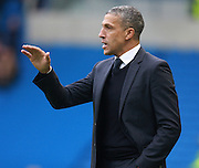 Chris Hughton during the Sky Bet Championship match between Brighton and Hove Albion and Middlesbrough at the American Express Community Stadium, Brighton and Hove, England on 19 December 2015. Photo by Bennett Dean.