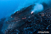 pillow lava erupts from an underwater lava tub at ocean entry of Kilauea Volcano, Hawaii Island (&quot; the Big Island &quot;), <br /> Hawaii, U.S.A. ( Central Pacific Ocean )