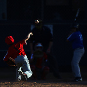 A young pitcher in action in the late afternoon light during the Norwalk Little League baseball competition at Broad River Fields, Norwalk, Connecticut. USA. Photo Tim Clayton