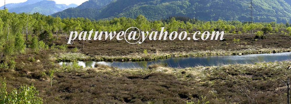 Beautiful lake in the middle of a Marshland in Chiemgau, Upper Bavaria; Germany. May 08