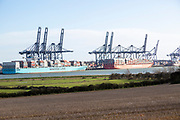 Container ships and gantry cranes at Port of Felixstowe view from Shotley, Suffolk, England,  UK