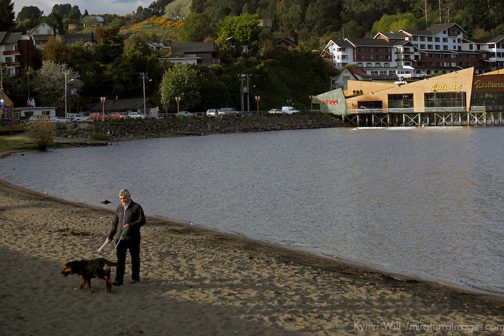South America, Chile, Puerto Varas. Man walking his dog on lake beach of Puerto Varas.
