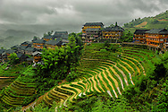 The terraced rice fields of the Dragon's backbone Rice terraces, China
