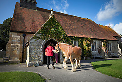 © Licensed to London News Pictures. 06/10/2019. Selsey, UK. A horse named Murphy arrives at St Peter's Church in Selsey, West Sussex to take part in the annual Service of Blessing of Animals. Parishioners bring their pets to the church for the annual service after earlier attending a Harvest Festival celebration. Photo credit: Peter Macdiarmid/LNP