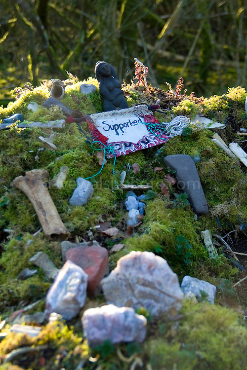 An altar for offerings on a tree stump at Rath Lugh - gifts and offerings left on a tree stump at the summit of Rath Lugh, an ancient bronze age promontory fort currently tagged for destruction by the construction of the M3 motorway between Dublin and Navan...
