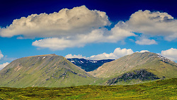 Summer landscape on the edge of Rannoch Moor, Scotland<br /> <br /> (c) Andrew Wilson | Edinburgh Elite media