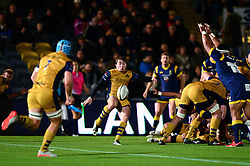 Rhodri Williams of Bristol Rugby - Mandatory by-line: Dougie Allward/JMP - 04/11/2016 - RUGBY - Sixways Stadium - Worcester, England - Worcester Warriors v Bristol Rugby - Anglo Welsh Cup