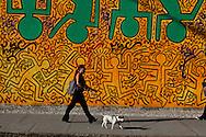 USA. New York , Mural painting on Houston street in Soho Manhattan. / peinture murale sur Houston street Soho Manhattan.