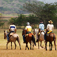 Llaneros cabalgando en los llanos venezolanos. El Hato Piñero, ubicado en los llanos centrales de Venezuela, Estado Cojedes; constituye un desarrollo que se caracteriza por el turismo ecológico, donde los visitantes pueden disfrutar de la diversidad de la fauna, las actividades ganaderas y agroindustriales. El Hato Piñero es un retiro para los amantes de la naturaleza, observadores de aves o los viajeros que simplemente buscan paz y tranquilidad. Estado Cojedes. Venezuela. Llaneros riding in the Venezuelan plains. El Hato Piñero, located in the central plains of Venezuela, Cojedes State; It is a development characterized by ecological tourism, where visitors can enjoy the diversity of fauna, livestock and agroindustrial activities. El Hato Piñero is a retreat for nature lovers, birdwatchers or travelers who simply seek peace and tranquility. Cojedes State. Venezuela.