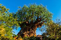 Tree of Life, Discovery Island, Disney's Animal Kingdom, Walt Disney World, Orlando, Florida USA