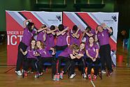 ICT Badminton 2017