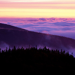 From Sugarloaf Mtn. Sunrise, undercast, fog. Nash Stream State Forest.   Northern Forest.  Stratford, NH