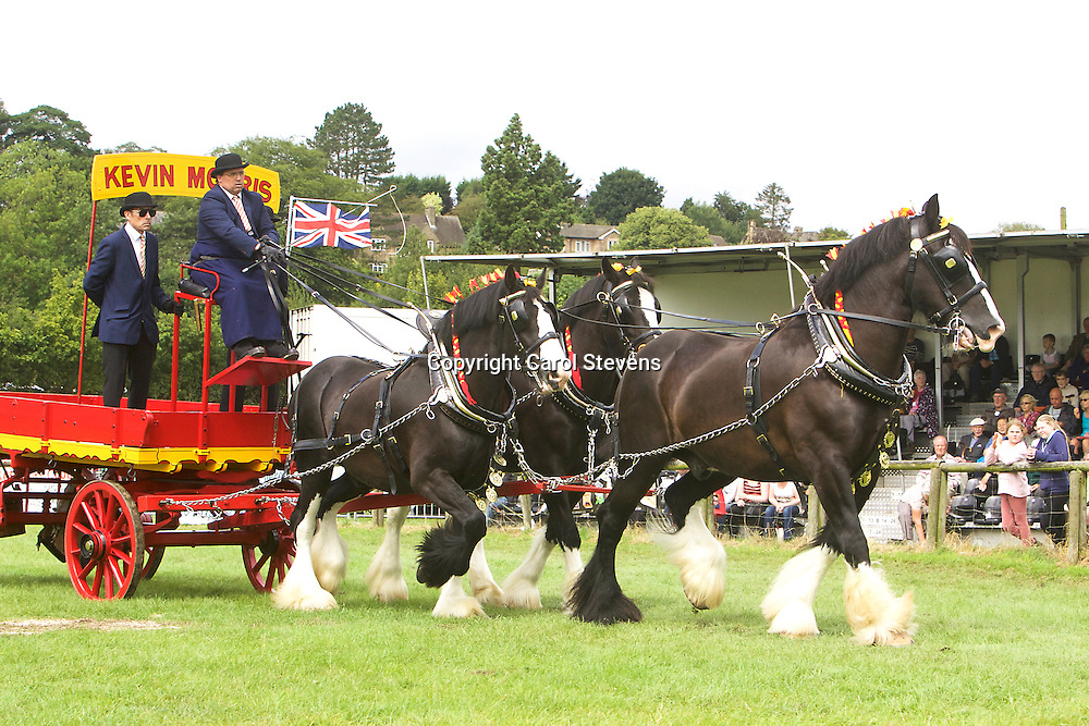 Kevin Morris driving his own Shires, Baron, Sergeant and Jack<br /> Warwick Shire Horse Carriages<br /> 5th  Team Turnouts