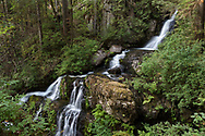 Steelhead Falls near the Reservoir Trail in the Hayward Lake Recreational Area in Mission, British Columbia, Canada