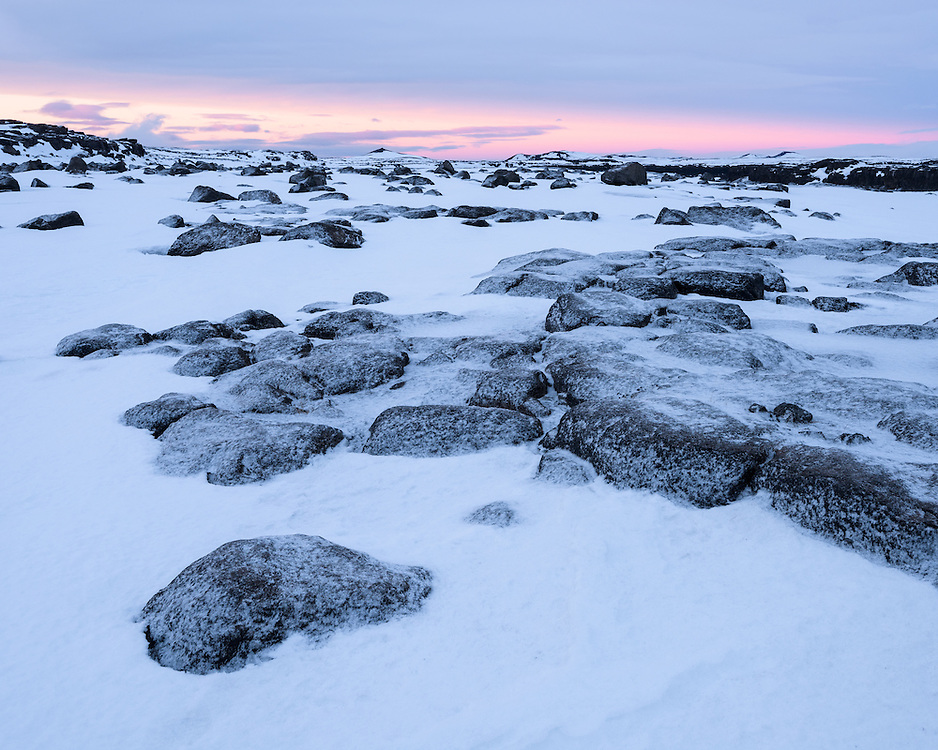 Tundra near Dettifoss, Northern Iceland