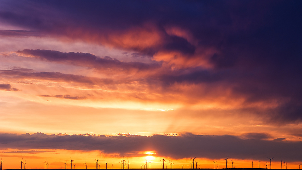 A picture of a group of windmills during a dramatic sunset on the Colorado plains.