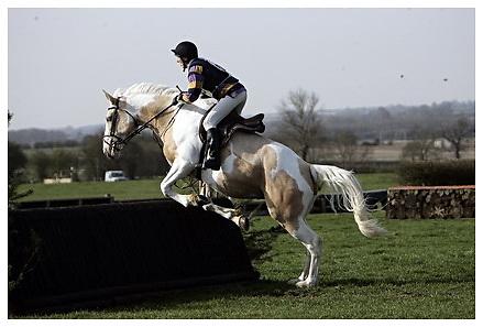 Buckingham Riding Club Eventer Trials at Milton Keynes Riding Club..5-4-2009.Tamsin
