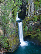 Toketee Falls (85+28 feet high in two steps), North Umpqua River, Douglas County, Oregon, USA. Columnar basalt frames the graceful falls in Umpqua National Forest. The Toketee Falls trailhead can be found 1/2 mile north of Highway 138 near Toketee Lake, 16 miles west of Diamond Lake, or 58 miles east of Roseburg.