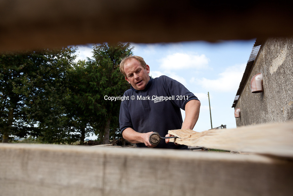 DORSET, UNITED KINGDOM. OCTOBER 14 2011. Garry Lewis of Winterborne Zelston Fencing splits an oak plank to make a handcrafted fencing pale. © Mark Chappell 2011. Licensed to Lyonsdown for single print usage in The Daily Telegraph Q4 2011.