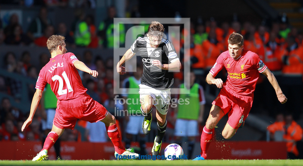 Picture by John Rainford/Focus Images Ltd +44 7506 538356<br /> 21/09/2013<br /> Lucas and Steven Gerrard of Liverpool and Adam Lallana of Southampton during the Barclays Premier League match at Anfield, Liverpool.