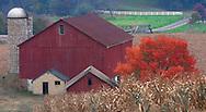 Autumn in Ohio. Amish Country.