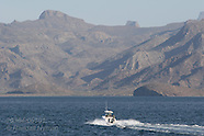 MEXICO 20304: SEA OF CORTEZ