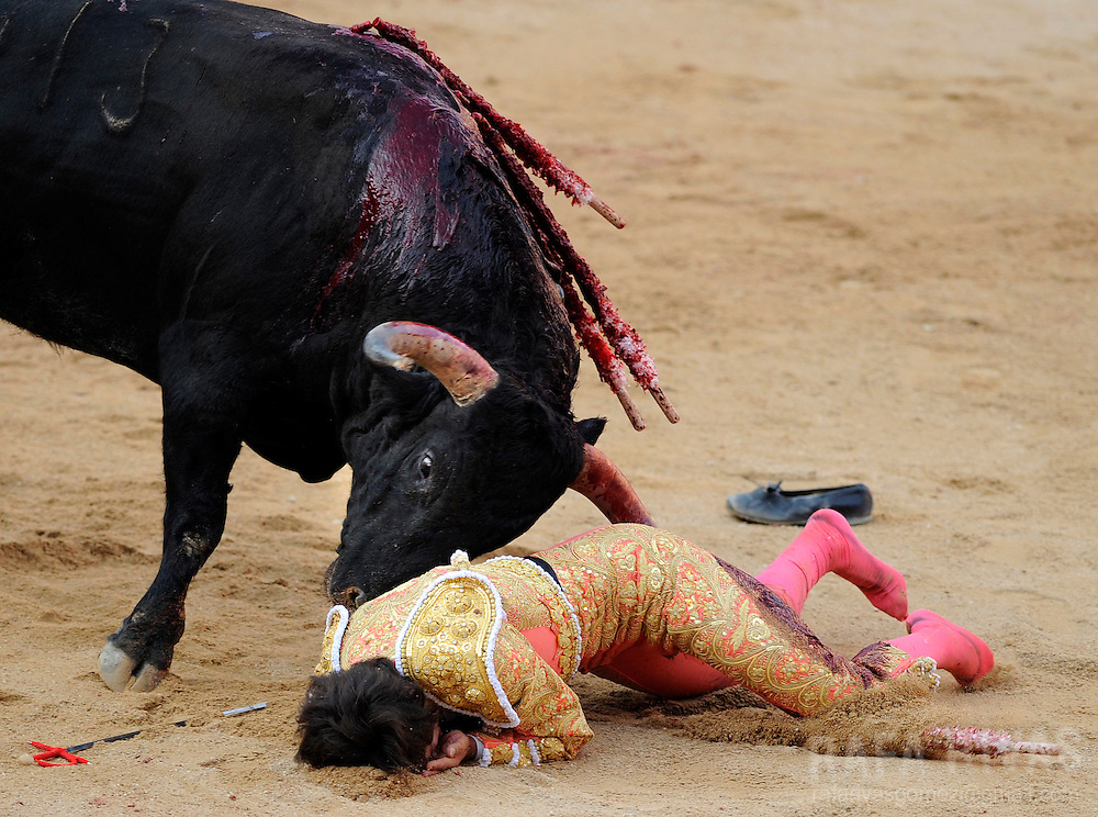French bullfighter Sebastian Castella is gored by a Fuente Ymbro fighting bull, on July 9, 2008, in the Spanish city of Pamplona, during the thirth corrida of the San Fermin festivities.