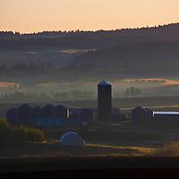 USA, Idaho, Tetonia. Early morning sun lights mist of farmlands near Tetonia, Idaho.