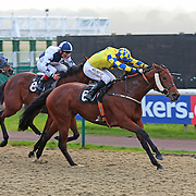 Lady Lunchalot and Liam Jones winning the 3.10 race