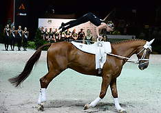 France-Equestrian, World Mounted Games, Vaulting