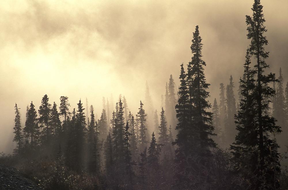 AM Atigun Pass, Dalton Highway, Alaska, USA