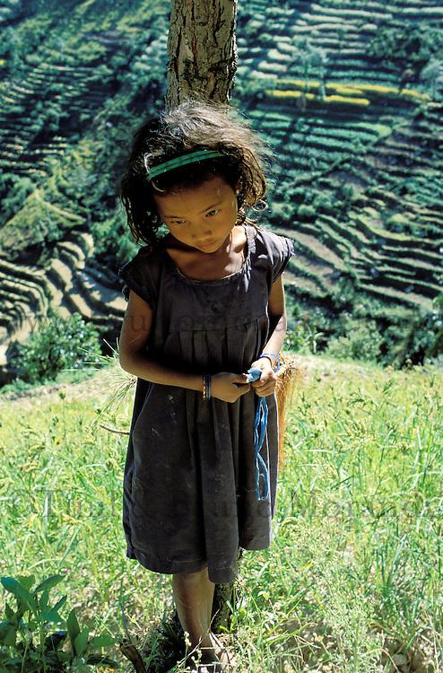 Nepal - Region de trisuli - Jeune fille d'ethnie Chetri sur fond de rizières