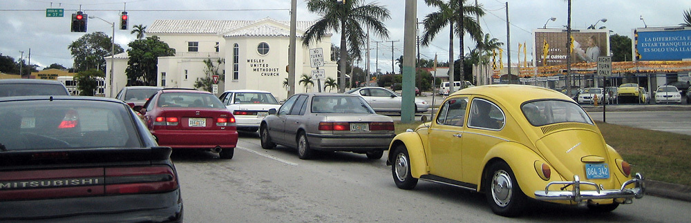 Volswagen Beetle in Miami, Fl
