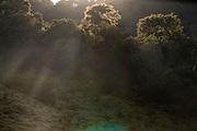 Santa Leopoldina_ES, Brasil...Vista das montanhas ao lado de um trecho da Rota Imperial da Estrada Real, antiga estrada Dom Pedro de Alcantra...View of mountains next to ancient Rota Imperial, know as Dom Pedro de Alcantara road...Foto: LEO DRUMOND / NITRO